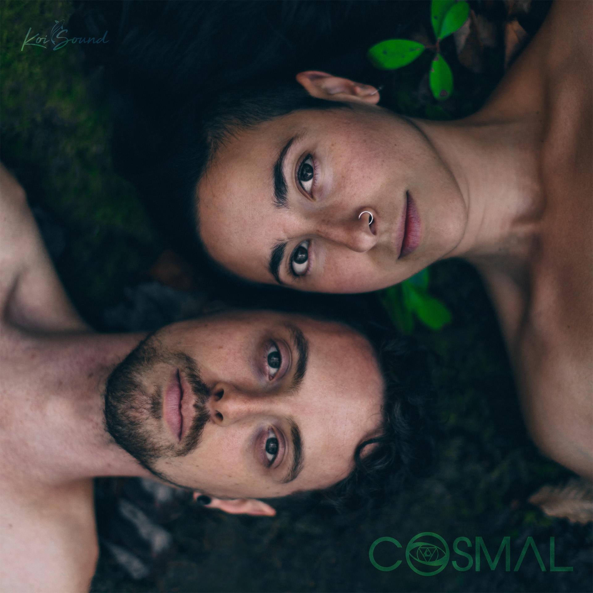 COSMAL LP Artwork