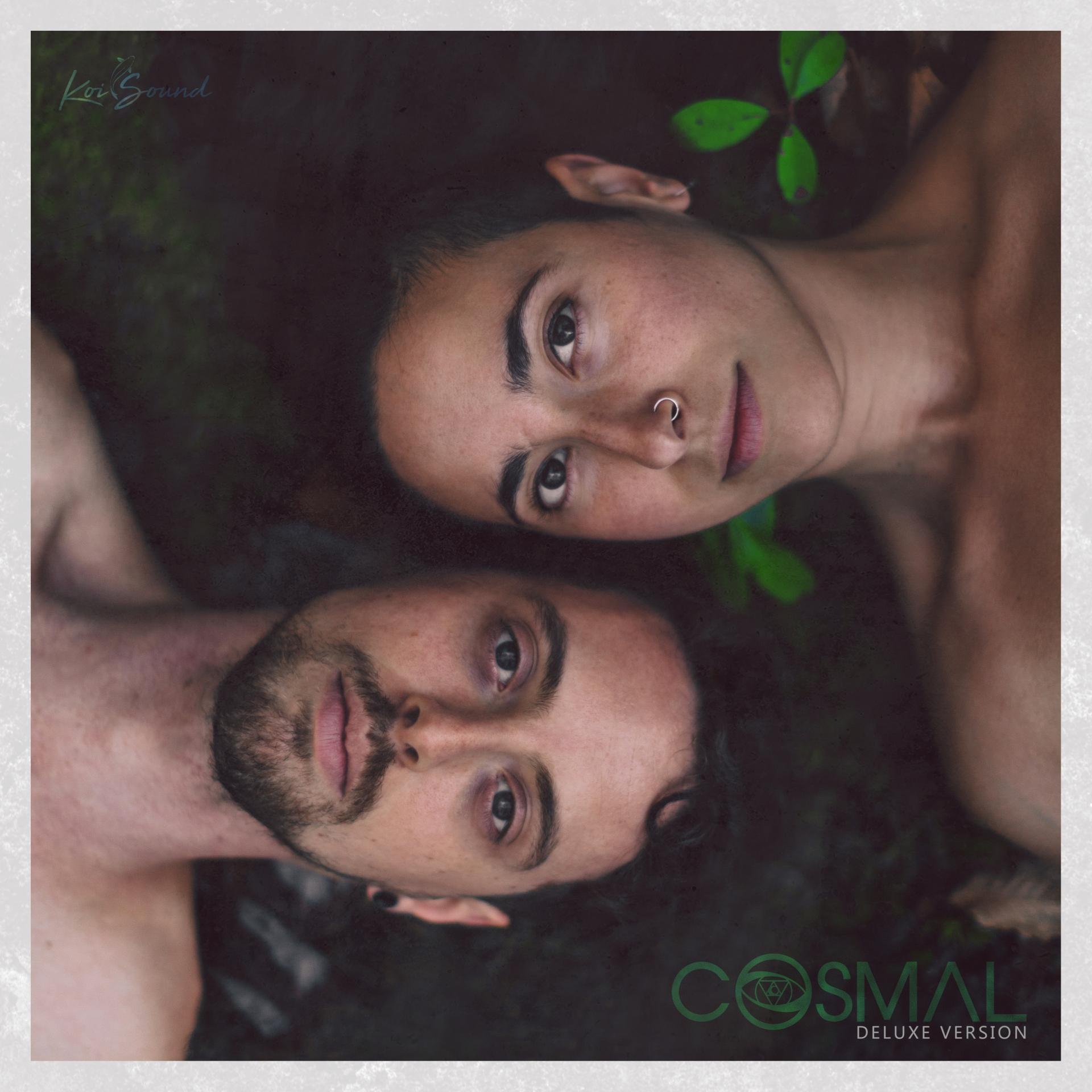 MUSIC - Cosmal - Live Music / Art Fusion